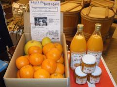 201202柑橘セット