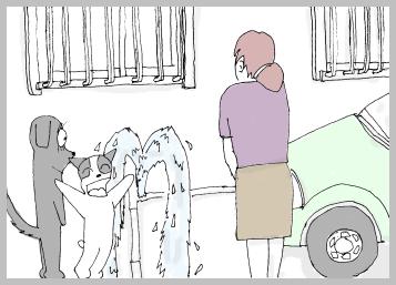 噴水を直す。4