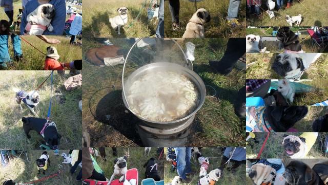 2011-10-09★山形パグパグ芋煮会