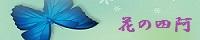青い蝶・花の四阿