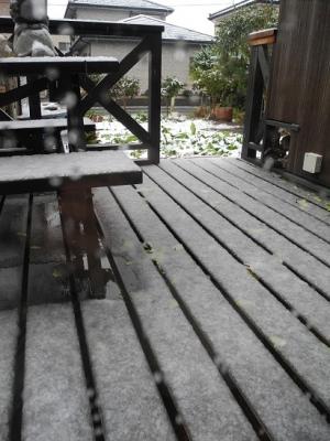 20131129積雪