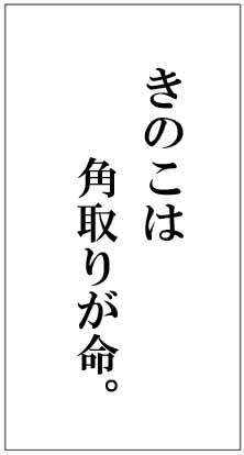 word6.jpg