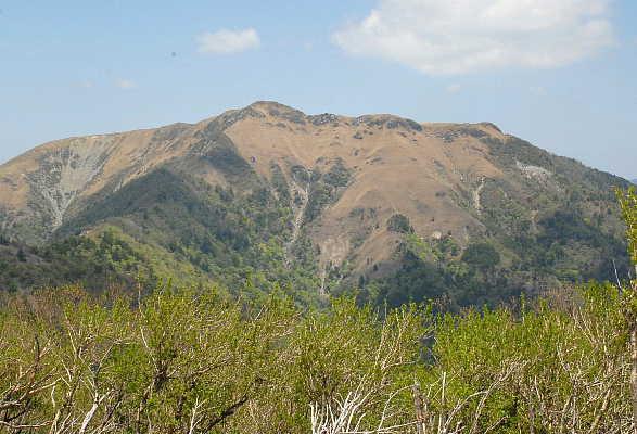 sanrei20106.jpg