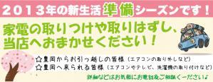 shinseikatu2013.jpg