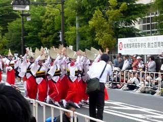 20130601フェスティバル(阿波踊りその6)