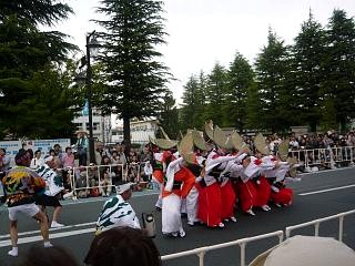 20130601フェスティバル(阿波踊りその9)