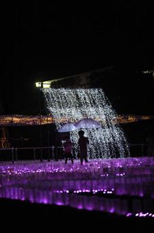 shokubutsuen2011_917_7.jpg