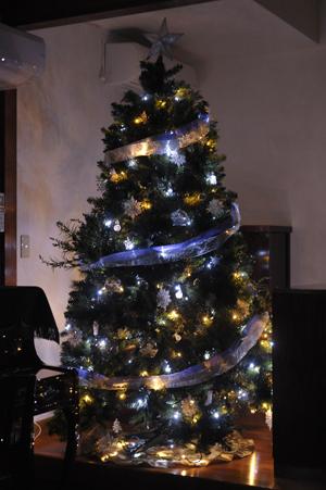 tree20141125-3.jpg