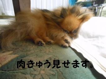 寝てるなな (2)