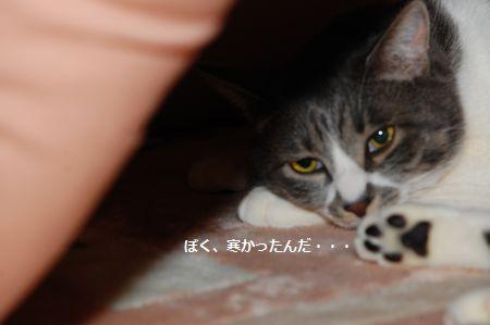 20120226miikun.jpg