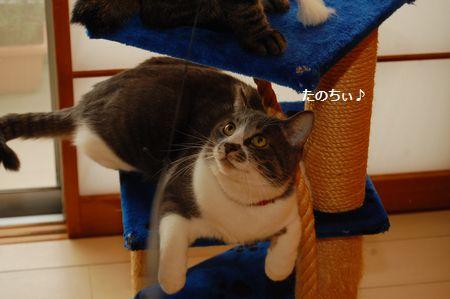 20120311miikun2.jpg