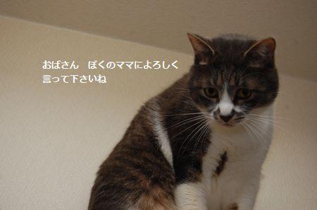 20120311miikun8.jpg