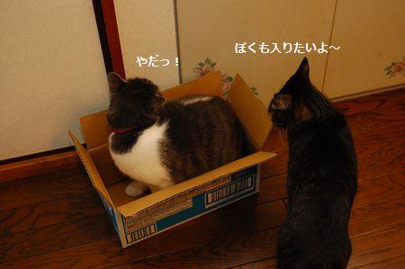 20120329kotetsumiikun2.jpg