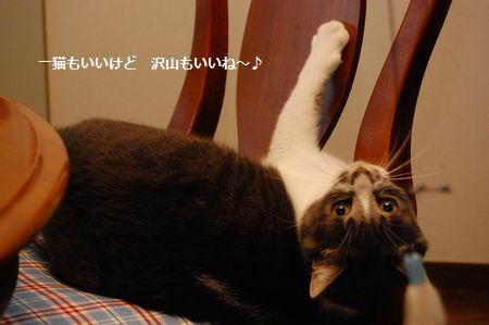 20120424miikun2.jpg