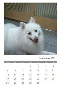 Photofunia Calendar#2L2CIBUNI8oGhx_VrYRLVg