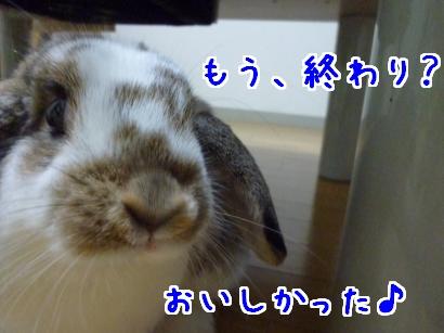 いちじく2