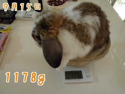 体重測定9・15