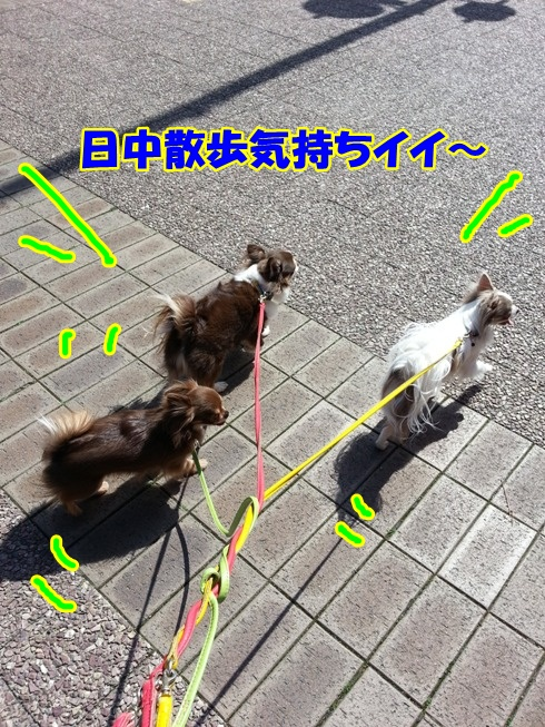 20130321_140443.jpg
