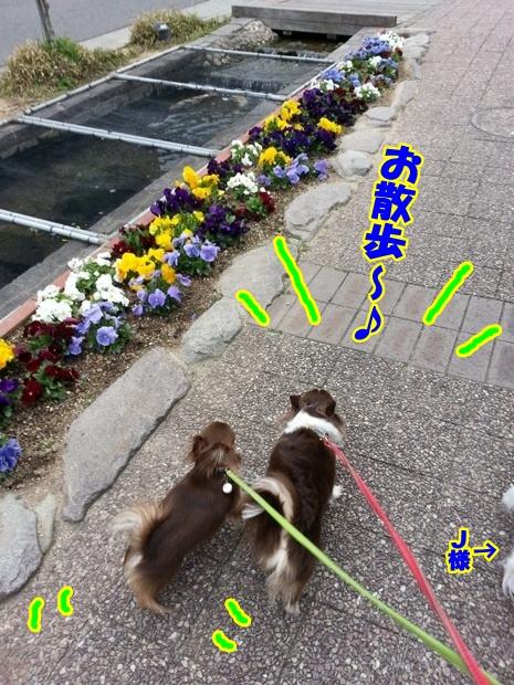 20130322_151624.jpg