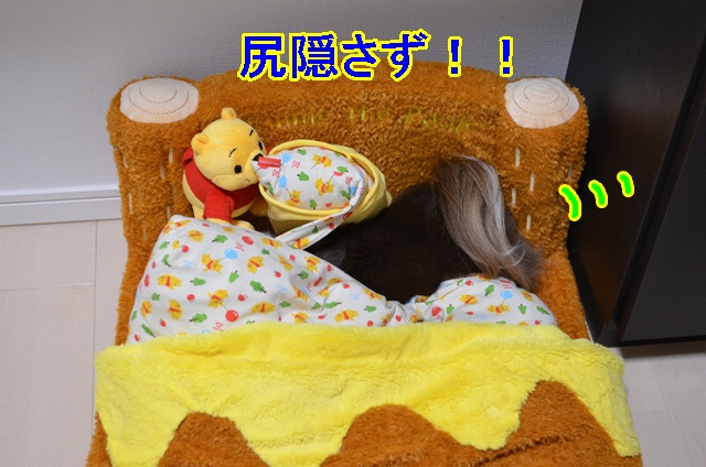 DSC_6369_20130518104136.jpg