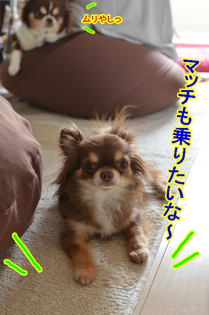 DSC_6538.jpg