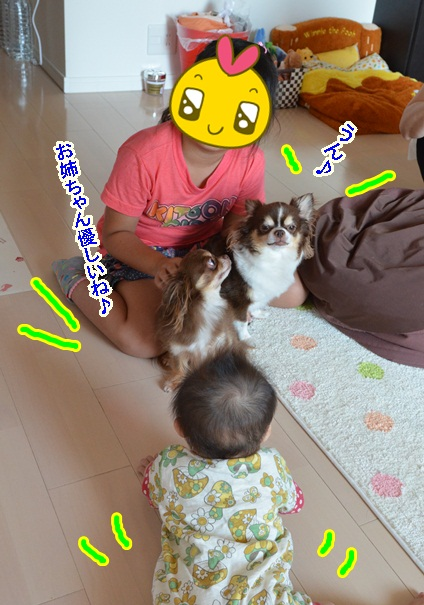 DSC_7393_20130702132734.jpg
