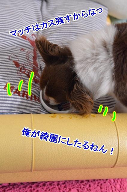 DSC_7417.jpg