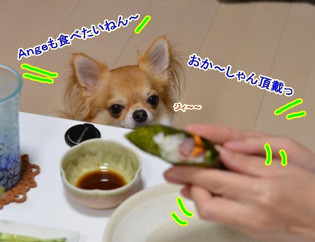 DSC_7590.jpg