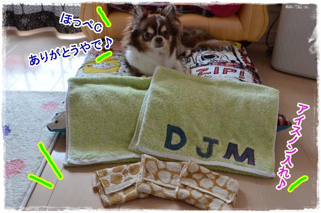 DSC_7687_20130714170423.jpg