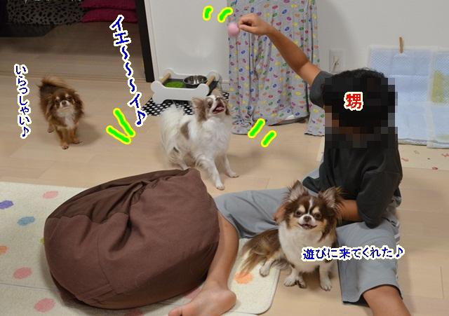 DSC_7689.jpg