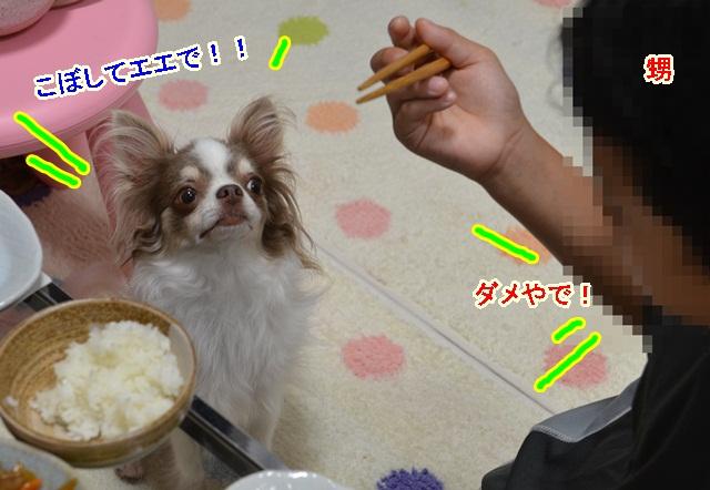 DSC_7693.jpg