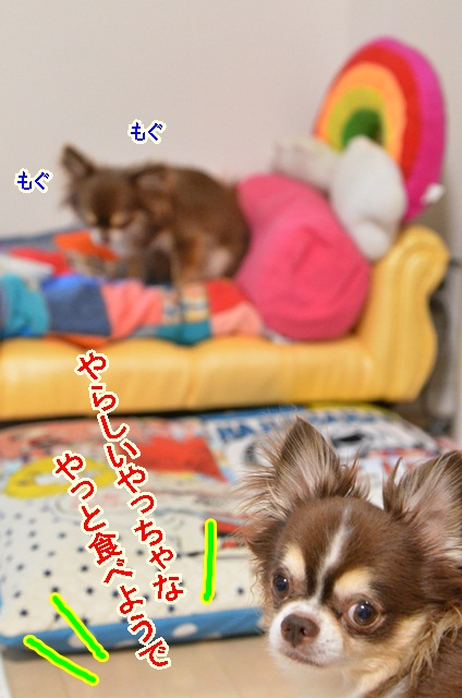 DSC_7746.jpg