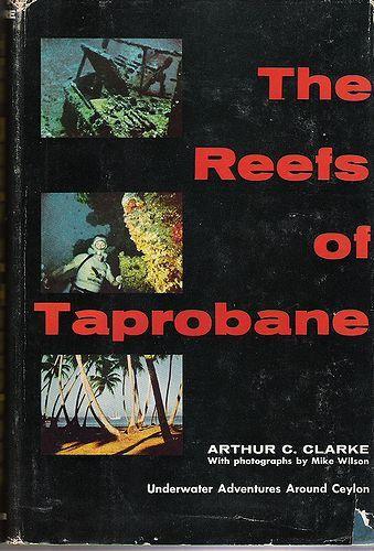 2009-9-16 (Reefs )