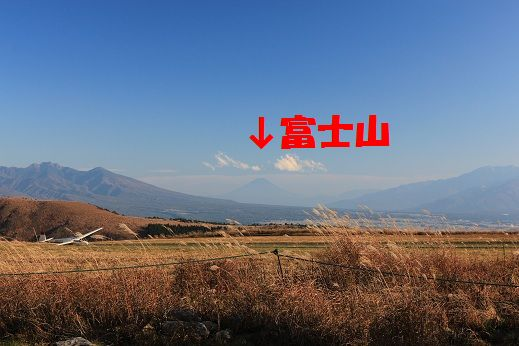 IMG_4457.jpg
