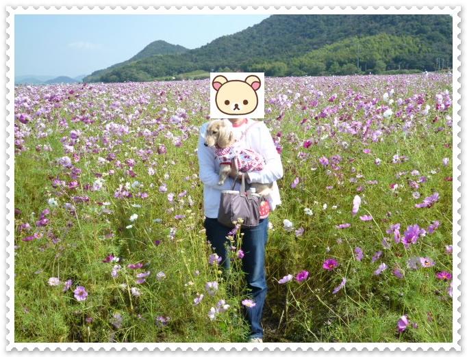 11_20111018141039.jpg