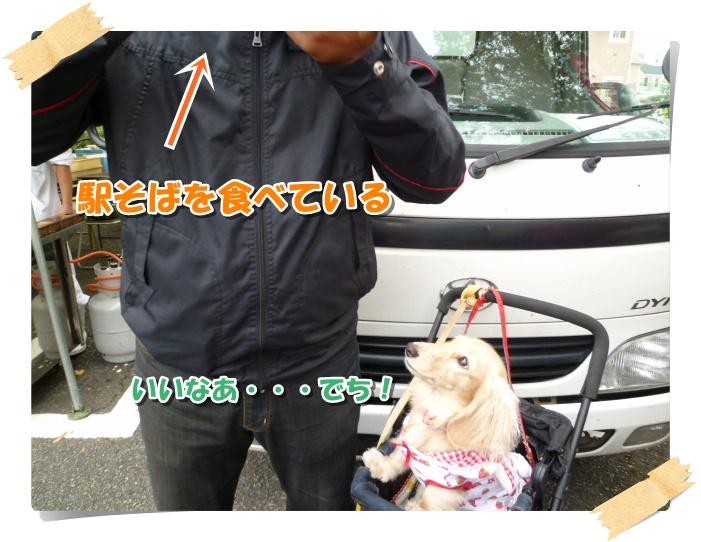 12_20111104170537.jpg