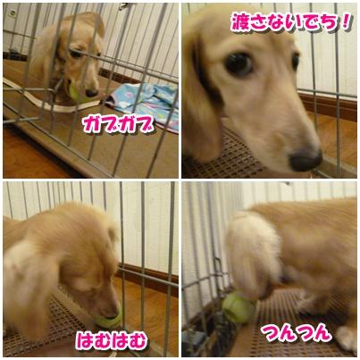 4_20111003150528.jpg