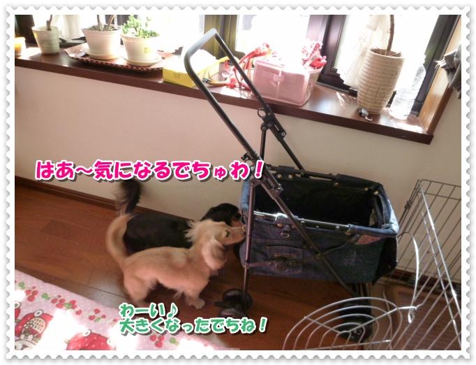6_20111013130956.jpg