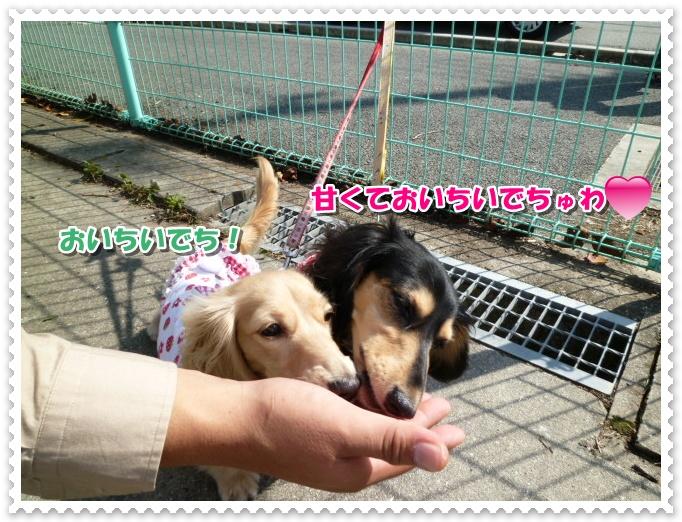 6_20111018141007.jpg
