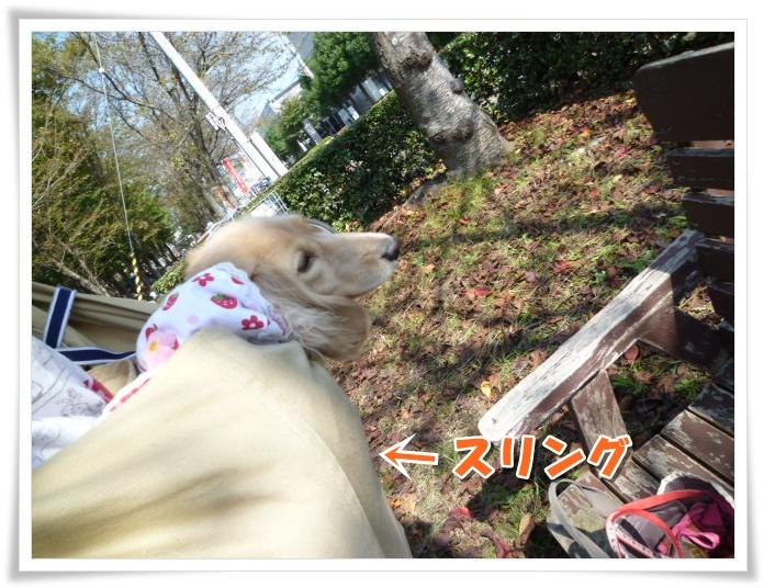 6_20111019114457.jpg