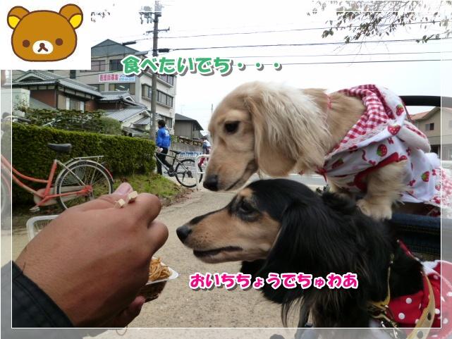 6_20111104170453.jpg