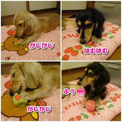 9_20111003150600.jpg
