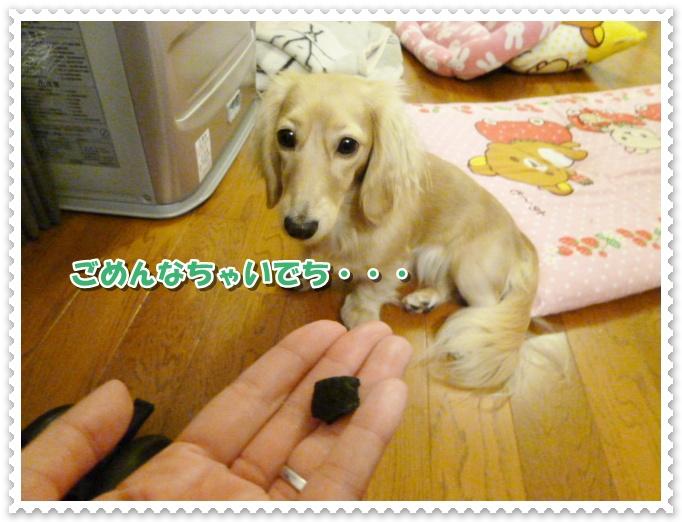 9_20111017135644.jpg