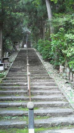 36番札所青龍寺の山門から長い石段