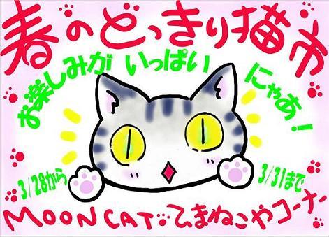 どっきり猫ポスター画像
