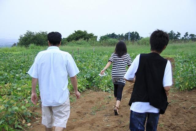 IMG_4657枝豆摘み体験