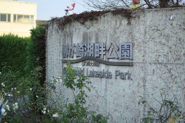 IMG_7776柳が崎湖畔公園