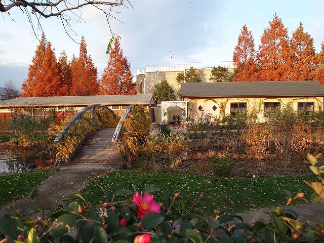 092柳が崎湖畔公園