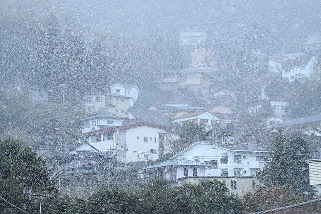 IMG_8746雪~