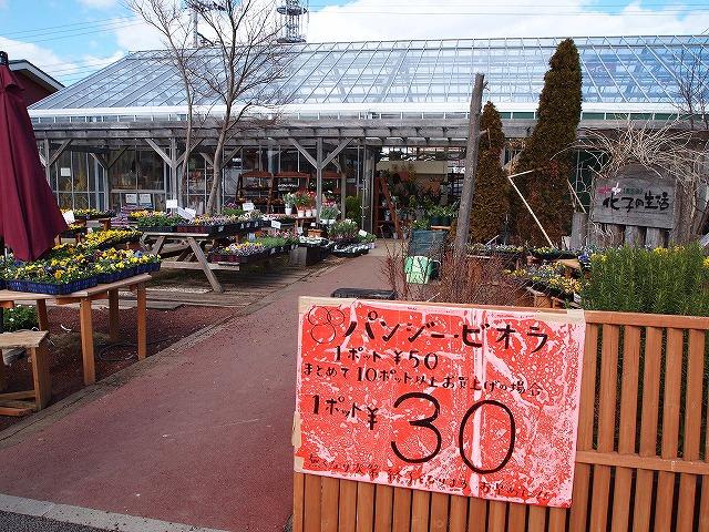 005伊豆村の駅